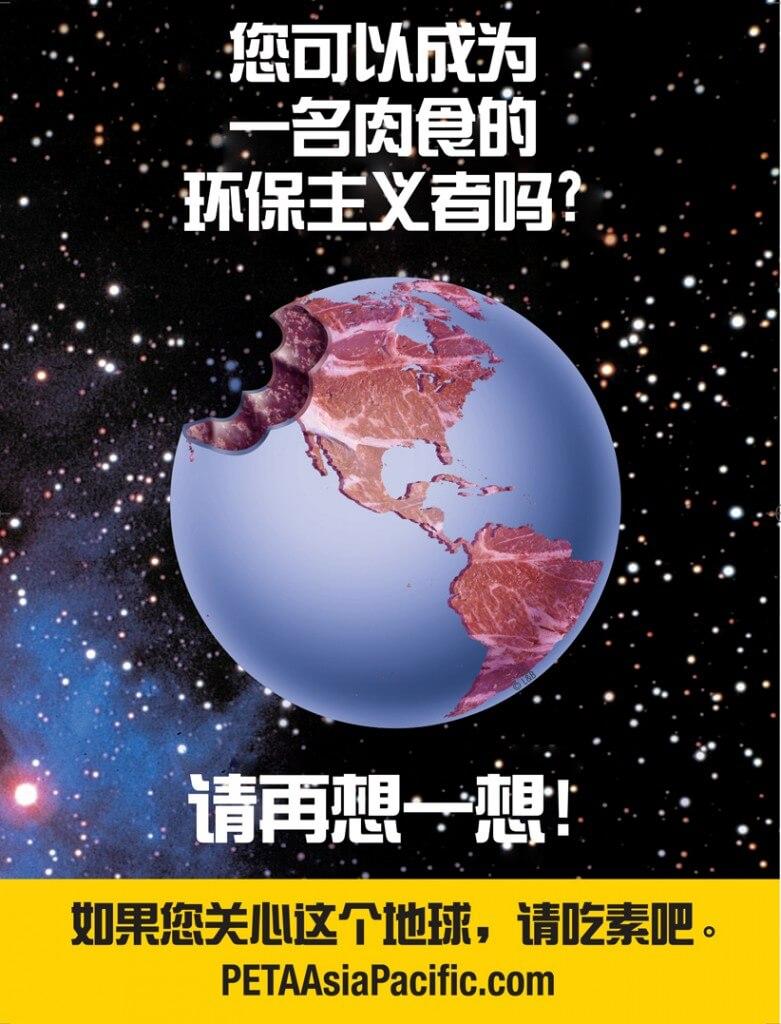 Enviro_Chinacrop1-781x1024