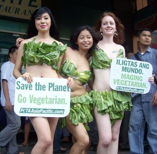 Manila-Lettuce-Ladies-April-08-1-506x497