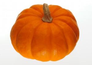 Pumpkin-300x214