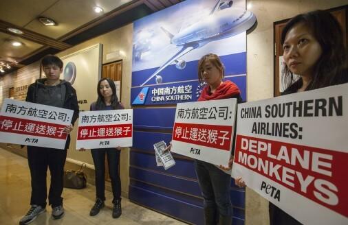 China-Southern-Airlines-Hong-Kong-Feb-6-2014-2-506x328