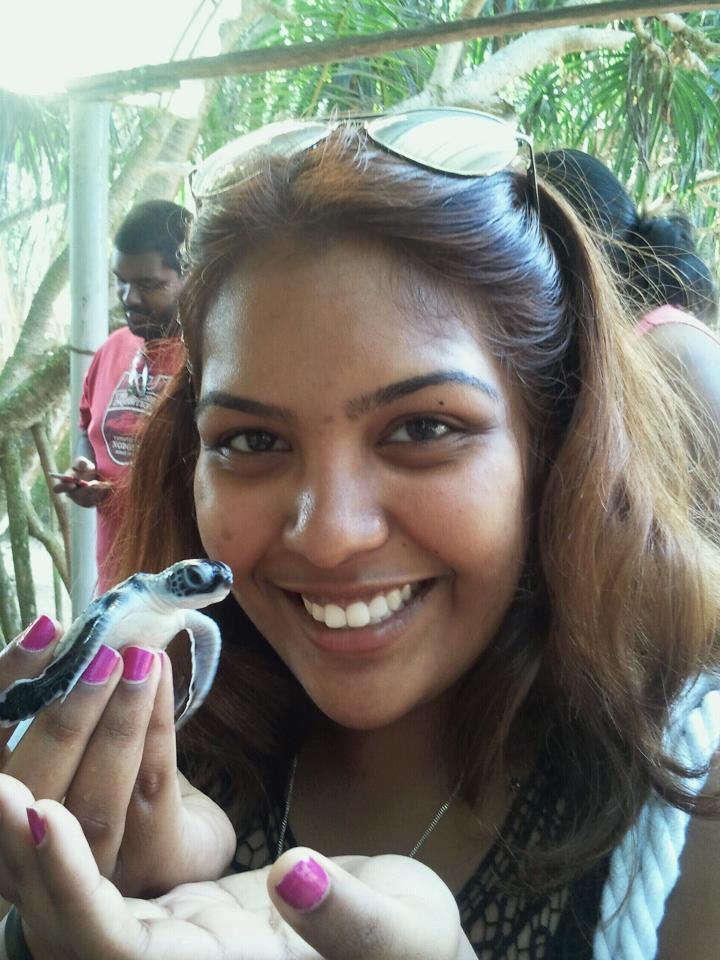 在斯里兰卡度假时拜访当地的海龟救助收容所