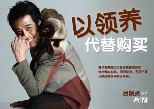 Jackie Lui Adoption Ad_SC_FIN72_version1