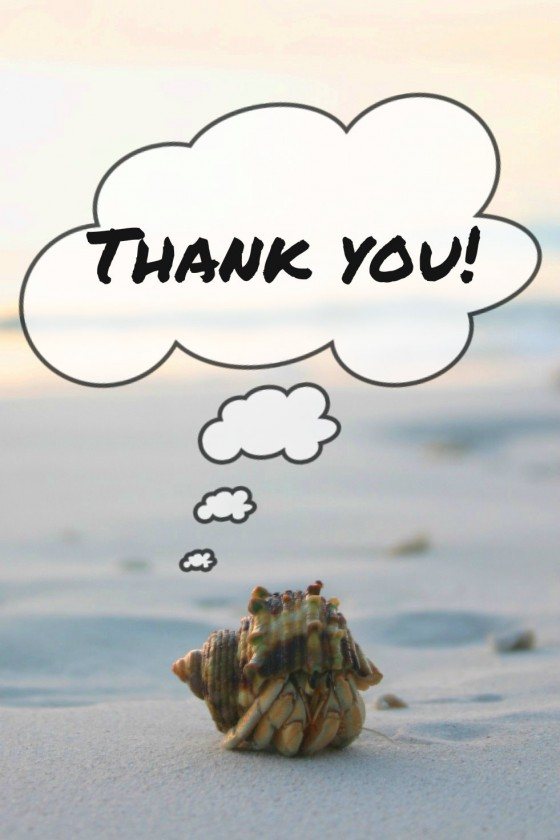 Hermit-Crab-Thank-you