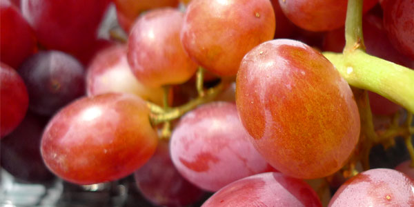 grapes-freeimages