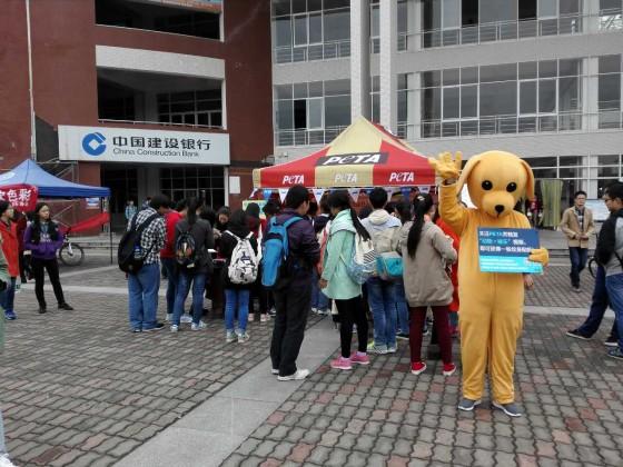 Changsha University of Science & Technology 111015
