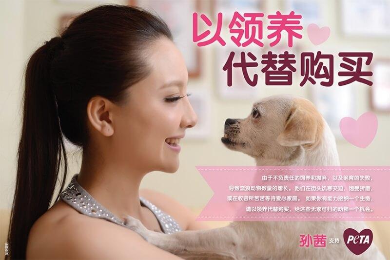 Sun Qian_Adoption Ad_SC_HORIZ_FINAL72