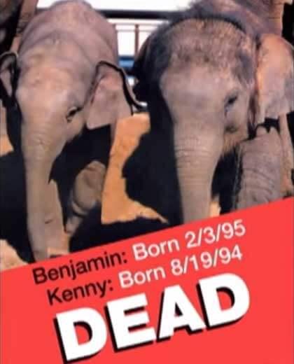 kenny-benjamin-dead