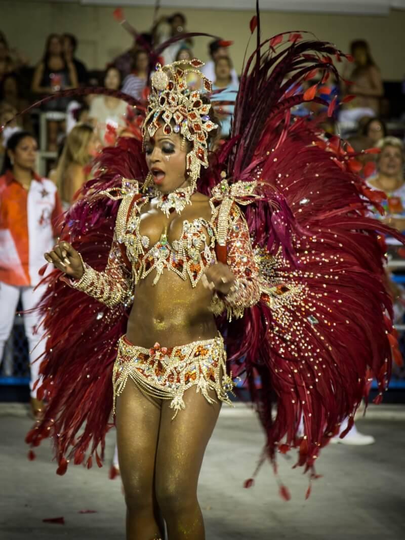 从鸵鸟身上扯下的羽毛会被用来装饰比如红磨坊歌舞厅和巴西里约嘉年华的服装道具。
