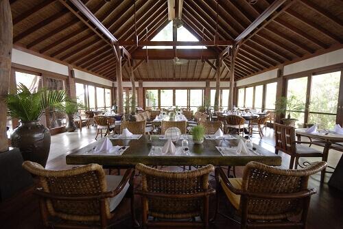 The-Farm-VEGAN-Restaurant500