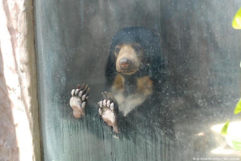 Zoo-Promo-E-mail-Image-sfw