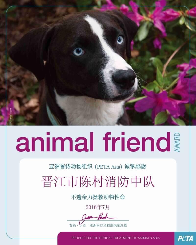 PAP_Animal Friend Award_Dog_Editable_300