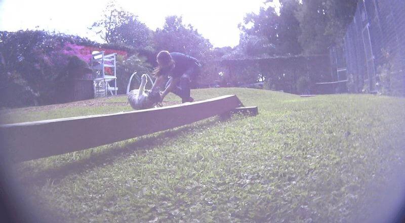photo-15_luna-knocked-down