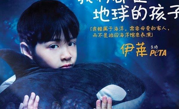 混血萌宝伊莱守护虎鲸:我们都是地球的孩子
